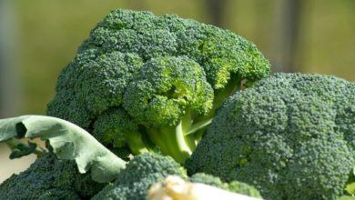 Photo of McDonald'svytvořil brokolici spříchutí žvýkačky
