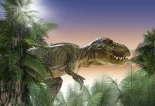 Photo of Lidi aTyrannosaura rexe rozděluje kratší doba než Tyrannosaura rexe aStegosaura
