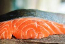 Photo of Lososí sádky přidávají do potravy barvivo, aby maso bylo oranžové