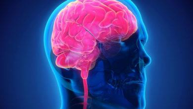 Photo of Denně zpracuje lidský mozek asi 74 gigabajtů dat, tedy kapacitu 16 DVD