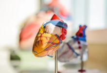 Photo of 1 z10000lidí má orgány uloženy zrcadlově