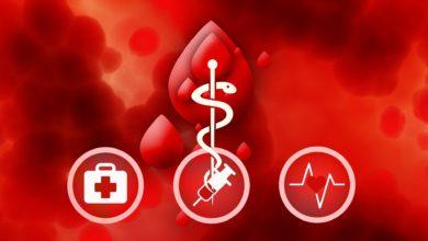 Photo of Dárci krve ve Švédsku dostanou SMS, když někomu zachrání život
