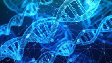 Photo of 1 gram DNA by pohodlně uschoval data Googlu, Facebooku, Wikipedie idalších velkých technologických firem