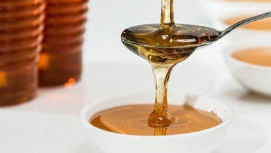 Photo of 2 lžičky medu by včele stačily na to, aby obletěla celou Zemi