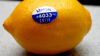Photo of Nálepky na ovoci azelenině jsou jedlé